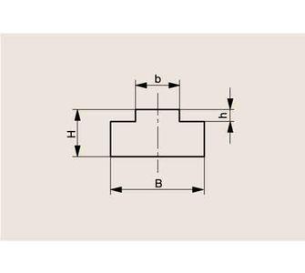 Направляющая роликовой цепи Тип T, Направляющая T